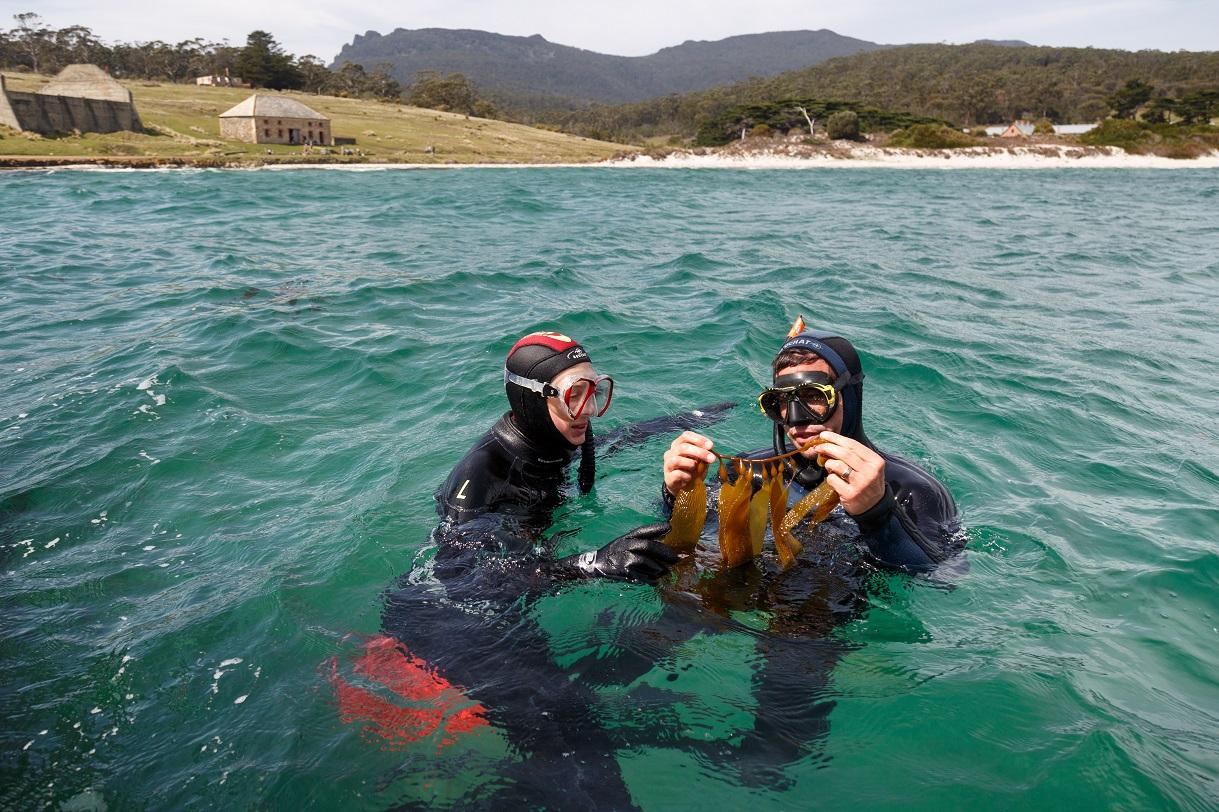 Maria Island diving