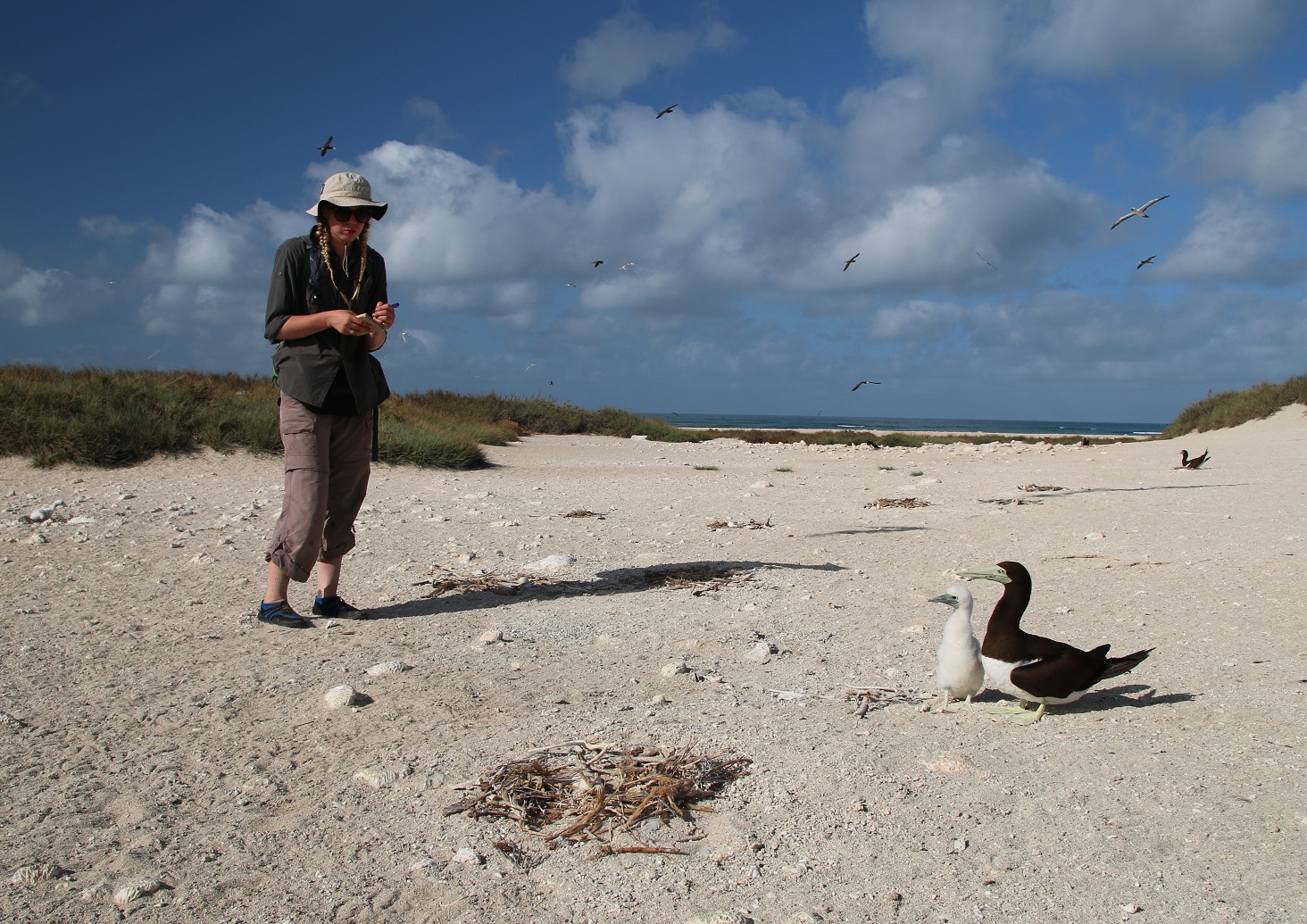 Megan Grant with brown booby